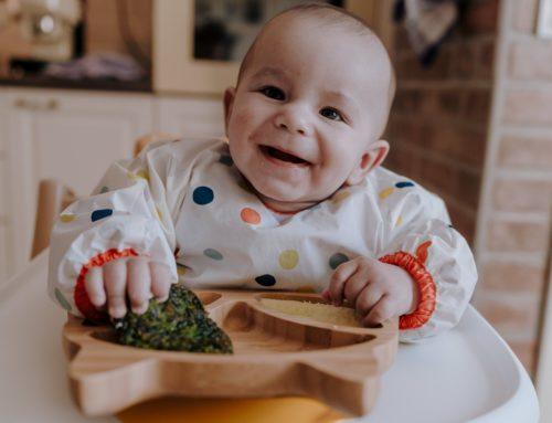 Beba Vođa Dohrane – BLW – naš prvi mjesec!