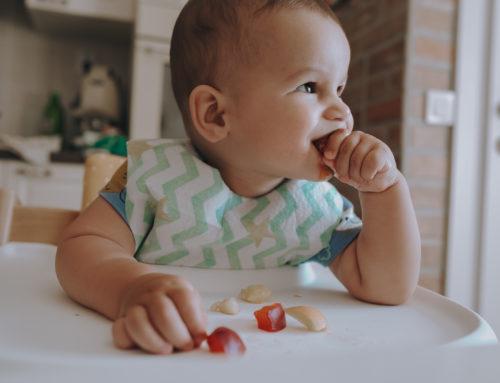 Beba vođa dohrane – drugi dio
